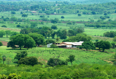 Destino religioso do Ceará, Cariri também conta com opções de ecoturismo