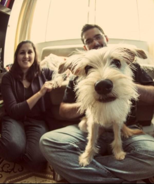 Site oferece serviço de hotel para cachorro em casa de pessoas que gostam de animais