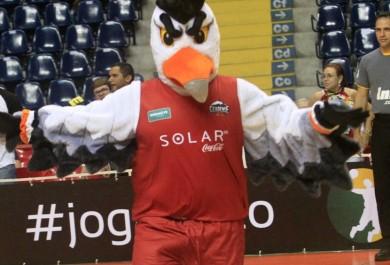 Nome do novo mascote do Basquete Cearense será escolhido por torcedores